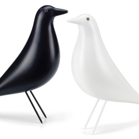 birds_okok